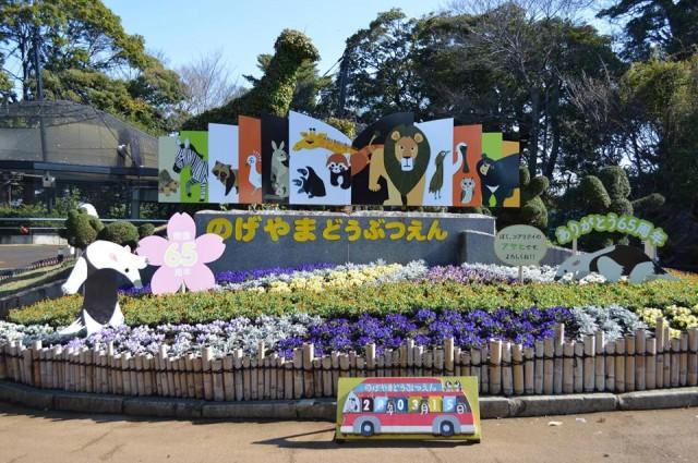 横浜で無料で遊ぶ?市民の憩いの場、野毛山動物園が熱い!
